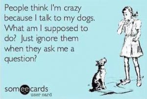 Talk to your dog!